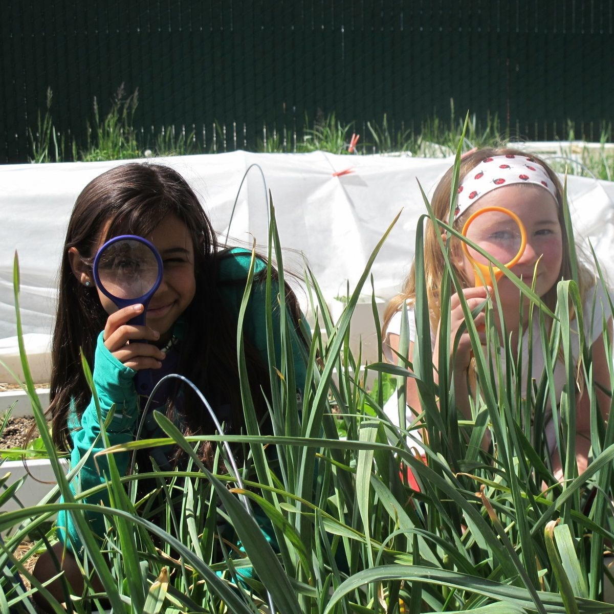 Outdoor - Girls with Magnifying Glasses.jpg